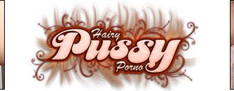 Hairy Pussy Porno